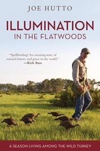 Illumination in the Flatwoods by Joe Hutto (9781493036967) - PaperBack - Pets & Nature Birds