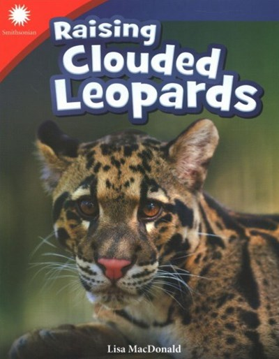 Raising Clouded Leopards