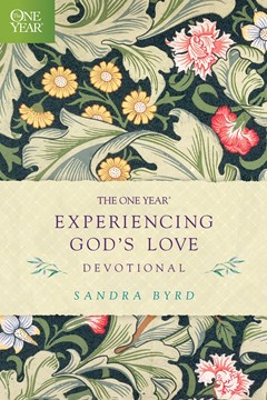 The One Year Experiencing God