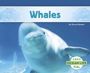 Whales by Grace Hansen (9781496612571) - PaperBack - Non-Fiction Animals