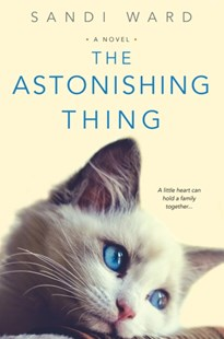 (ebook) Astonishing Thing - Modern & Contemporary Fiction General Fiction