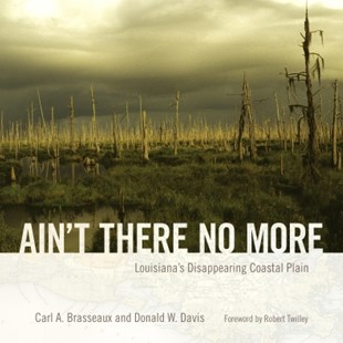 (ebook) Ain't There No More - History Latin America