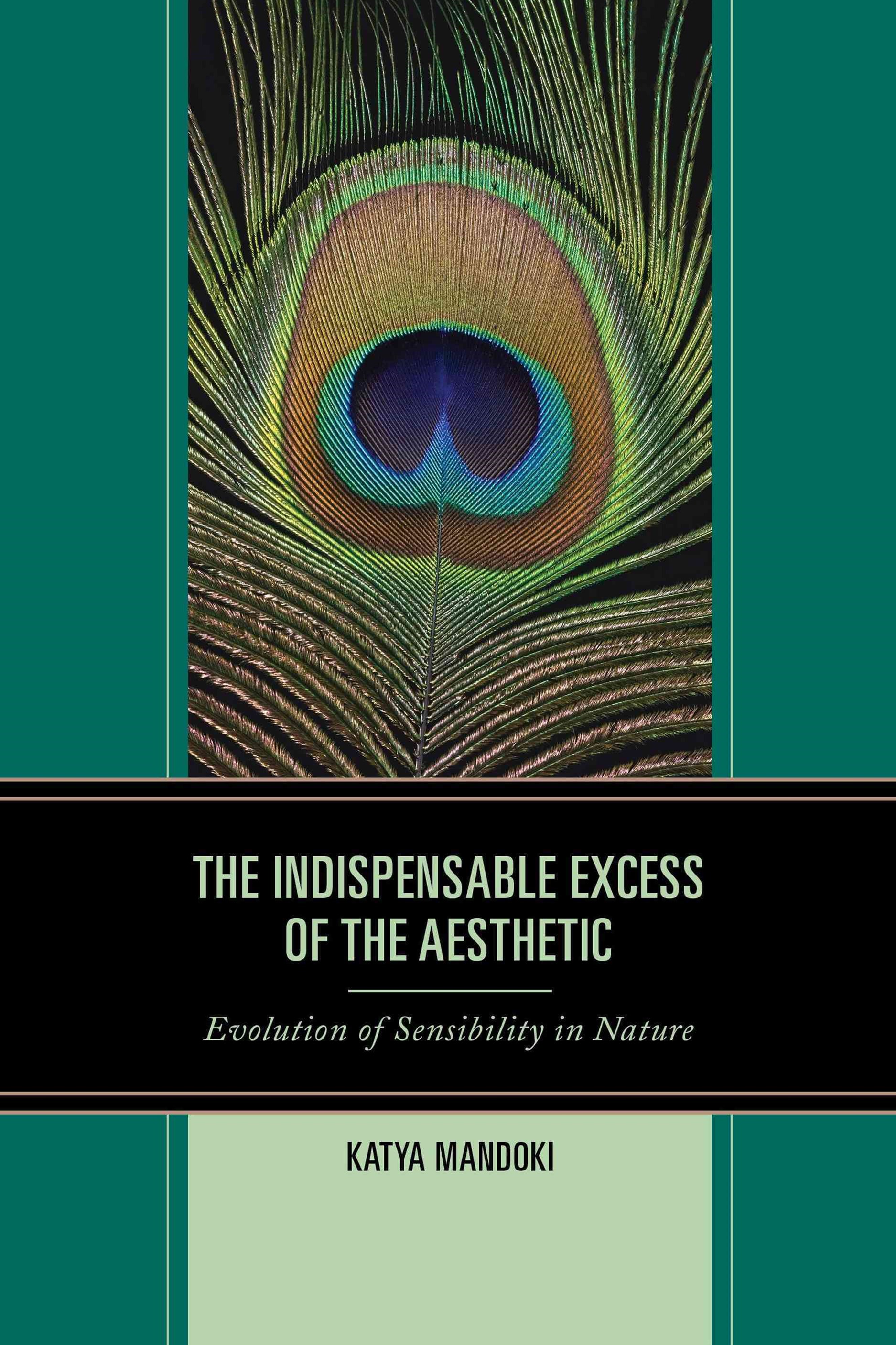 The Indispensable Excess of the Aesthetic