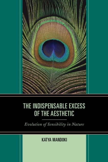 Indispensable Excess of the Aesthetic