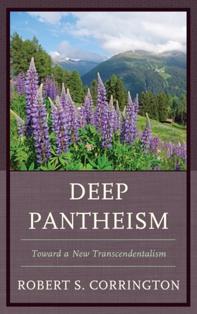(ebook) Deep Pantheism