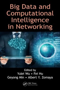 (ebook) Big Data and Computational Intelligence in Networking - Computing Database Management