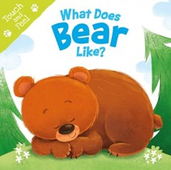 What Does Bear Like