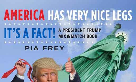 America Has Very Nice Legs - It's a Fact! by Pia Frey (9781501179297) - PaperBack - Biographies Political