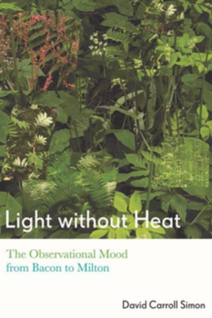 (ebook) Light without Heat