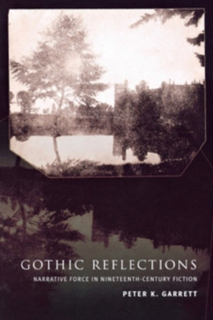 (ebook) Gothic Reflections