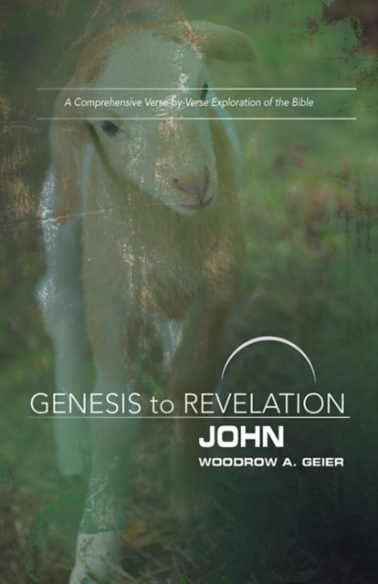 Genesis to Revelation: John Participant Book [Large Print]