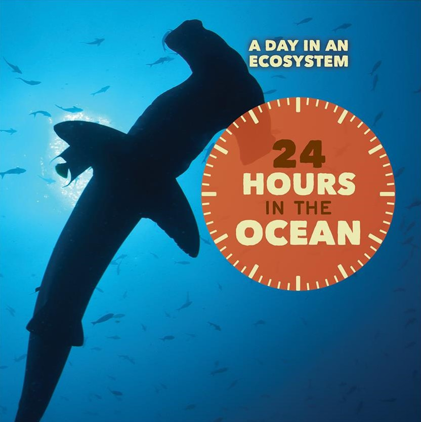 24 Hours in the Ocean