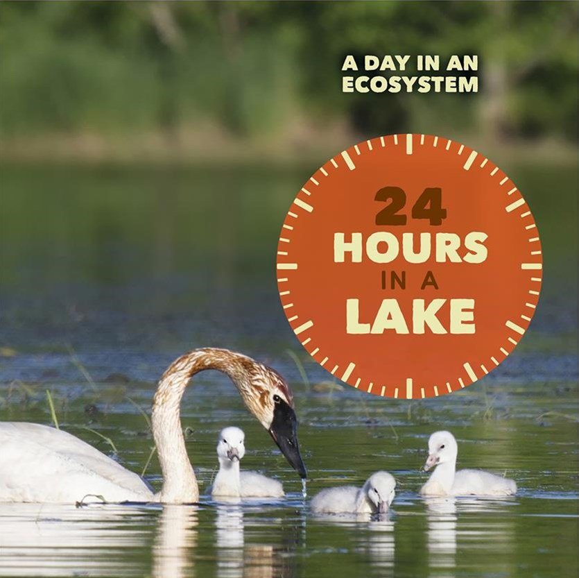 24 Hours in a Lake