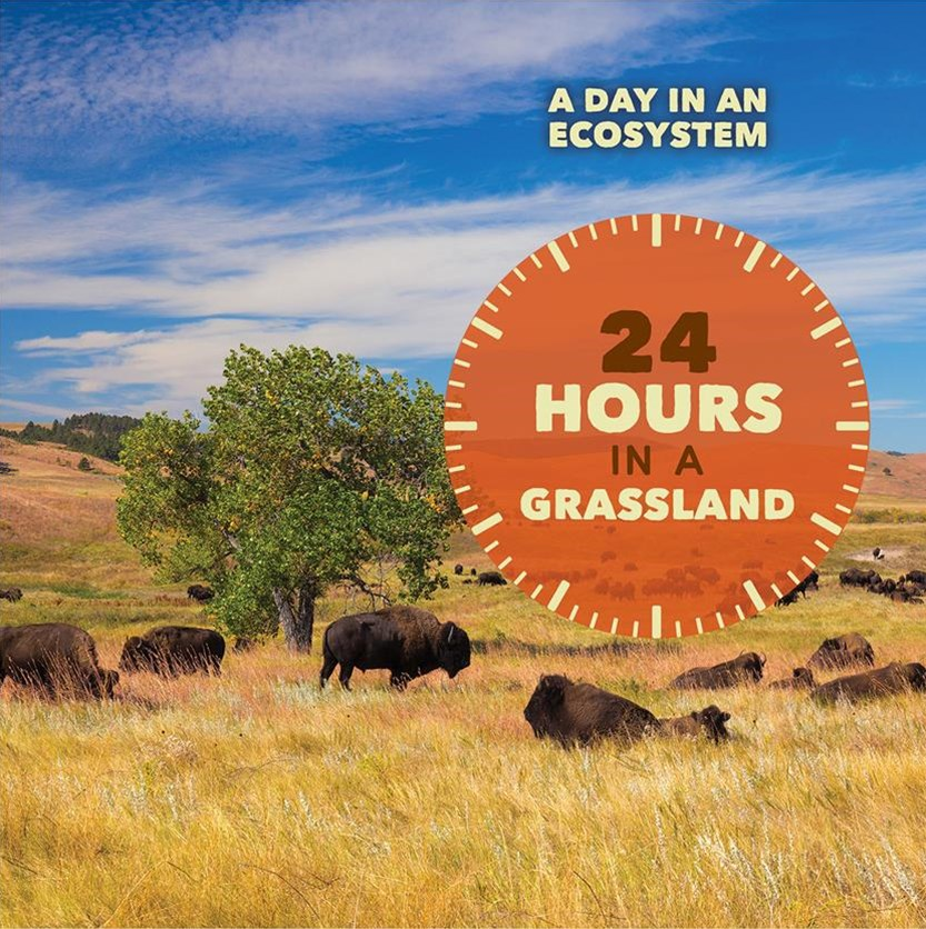 24 Hours in a Grasslands