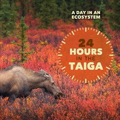 24 Hours in the Taiga