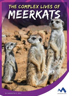 The Complex Lives of Meerkats