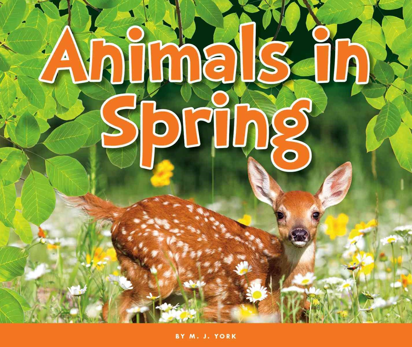 Animals in Spring