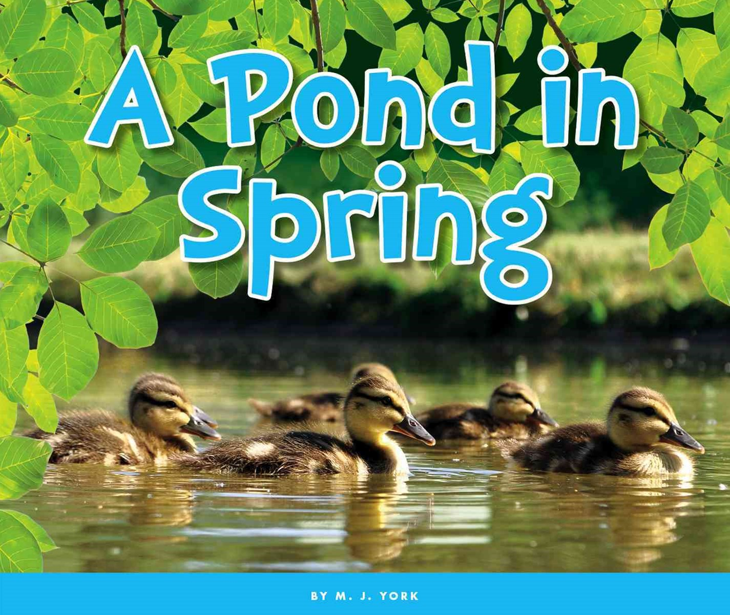 A Pond in Spring