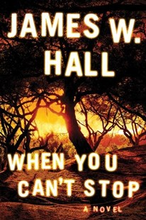 When You Can't Stop by James W. Hall (9781503903067) - PaperBack - Crime Mystery & Thriller