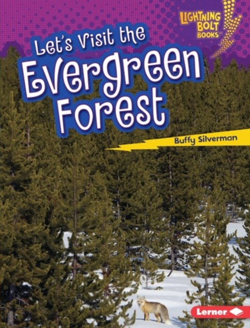 Let's Visit the Evergreen Forest