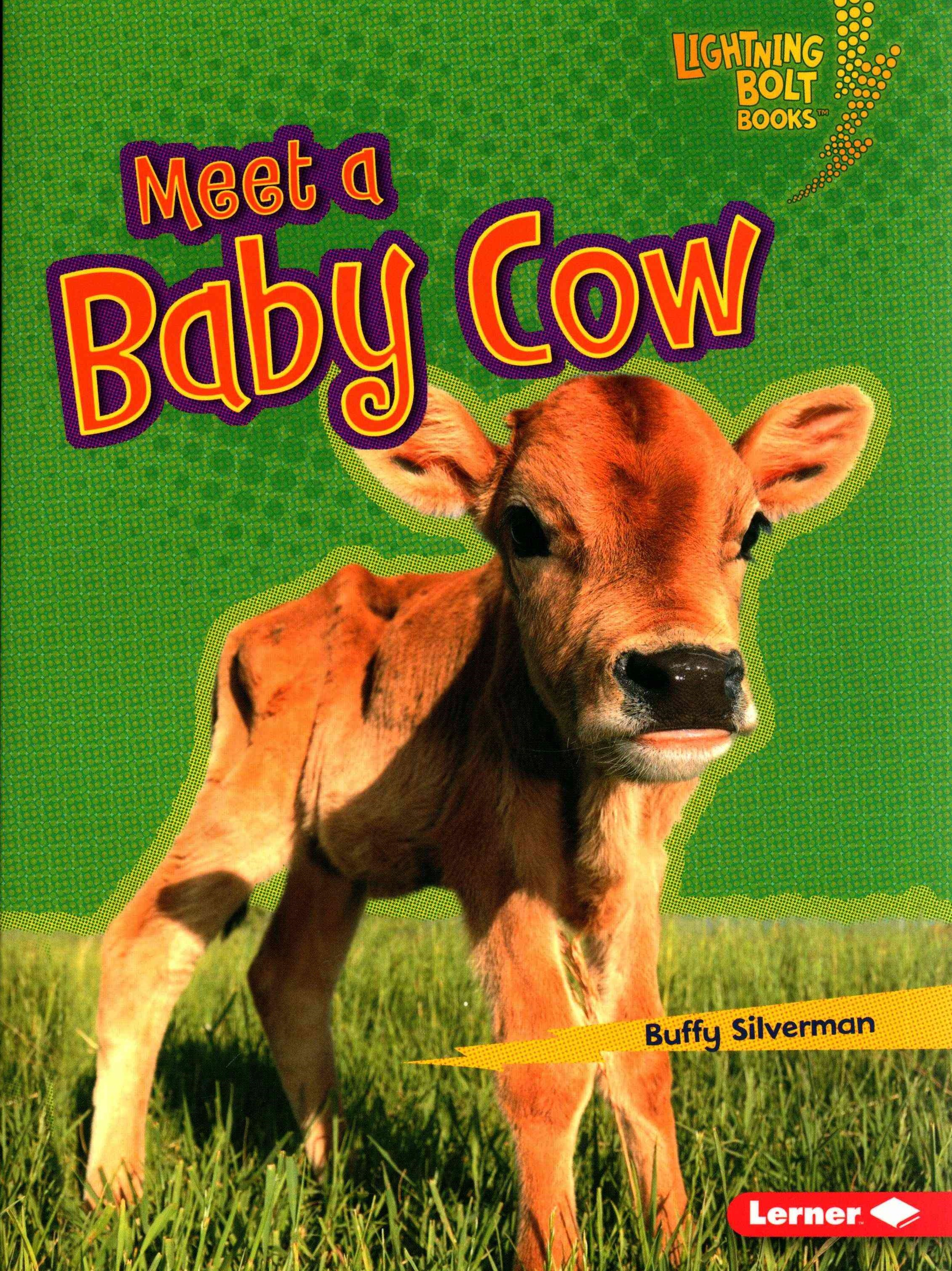 Meet a Baby Cow - Baby Farm Animals - Lightning Bolt