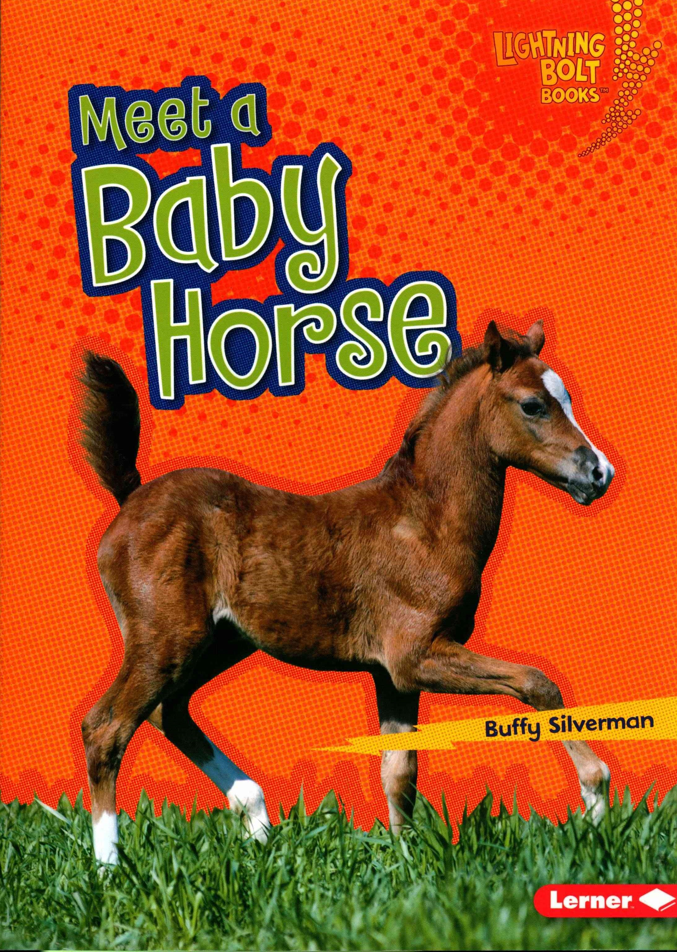 Meet a Baby Horse - Baby Farm Animals - Lightning Bolt