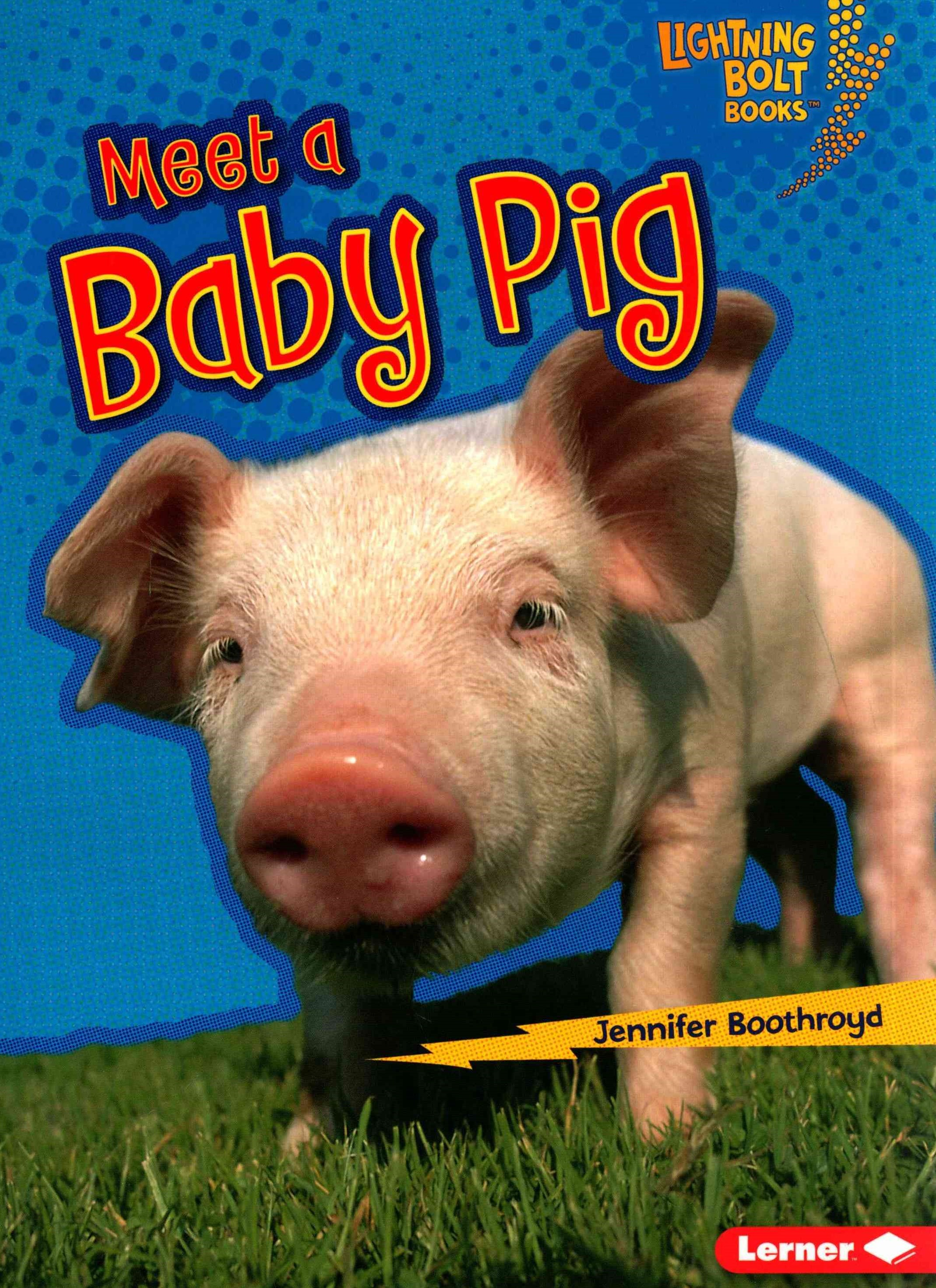 Meet a Baby Pig - Baby Farm Animals - Lightning Bolt