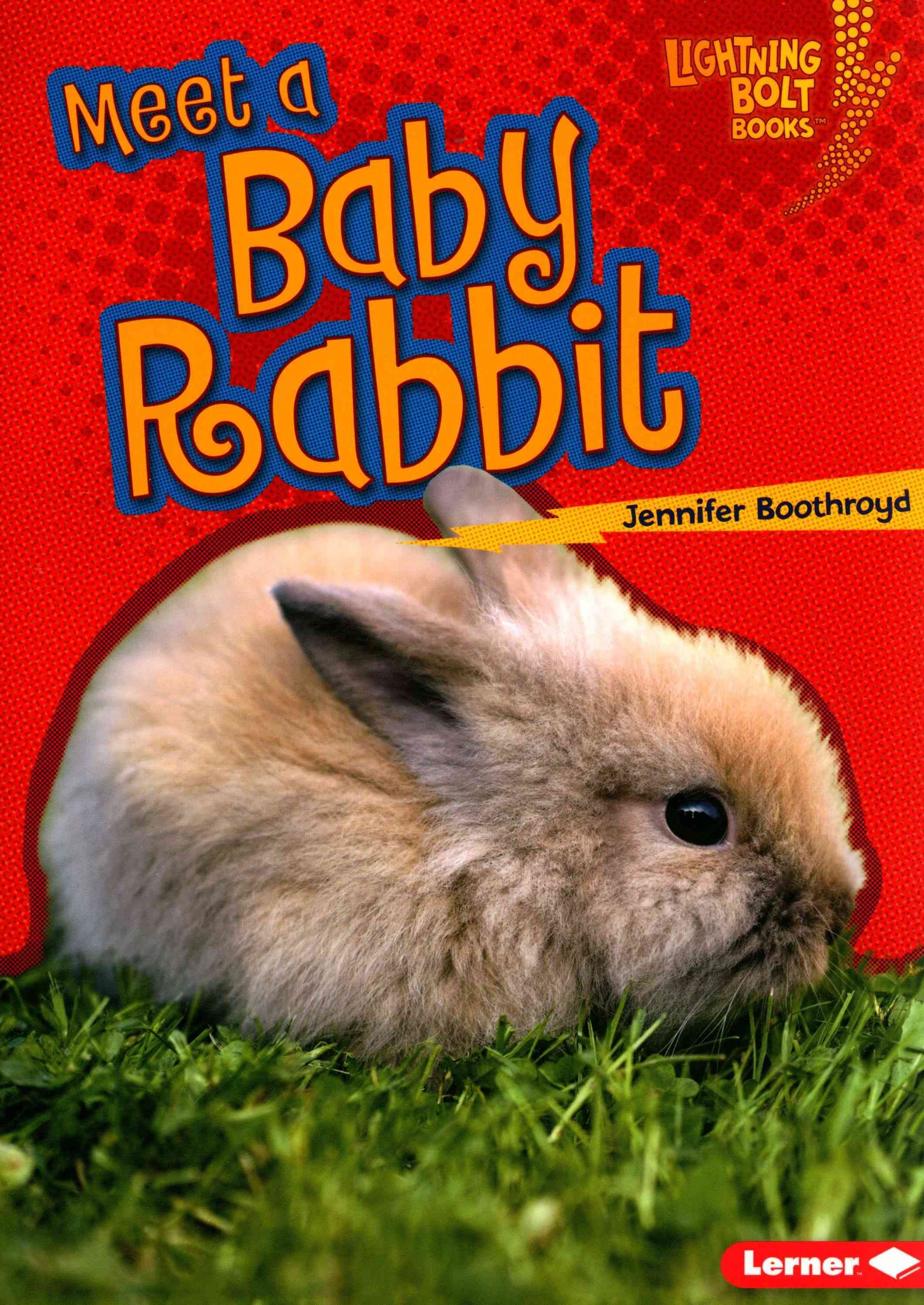 Meet a Baby Rabbit - Baby Farm Animals - Lightning Bolt