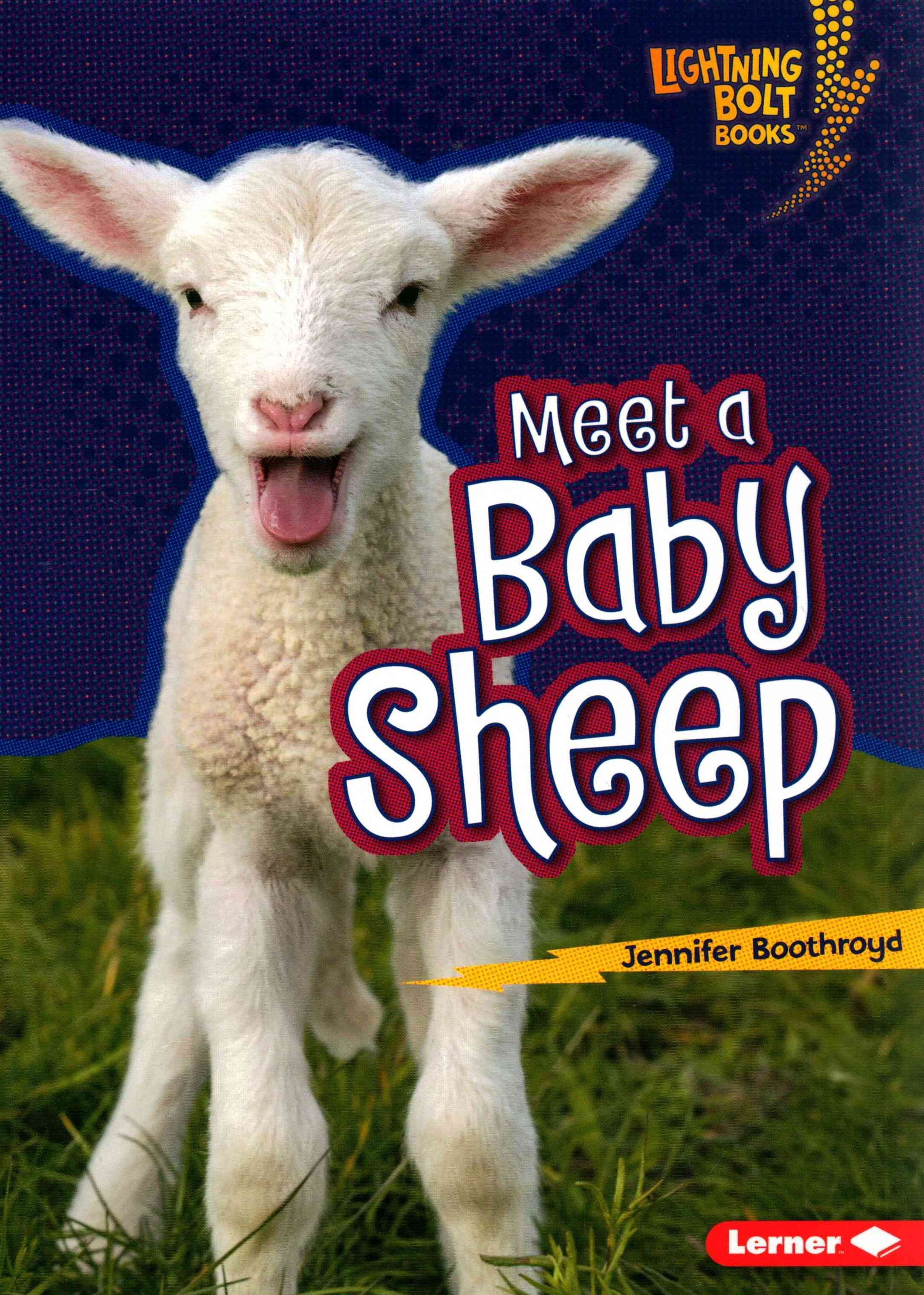 Meet a Baby Sheep - Baby Farm Animals - Lightning Bolt