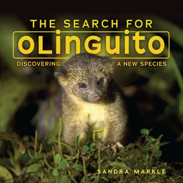 Search for Olinguito