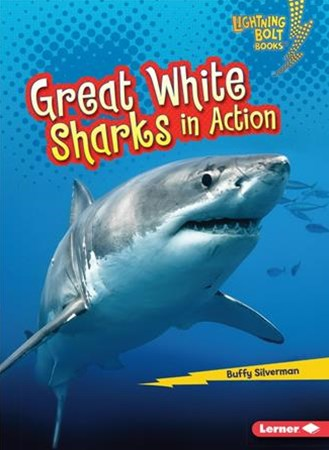 Great White Sharks in Action