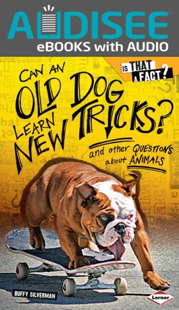 Can an Old Dog Learn New Tricks?