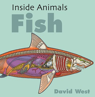 Inside Animals: Fish by David West (9781526310866) - PaperBack - Non-Fiction Animals