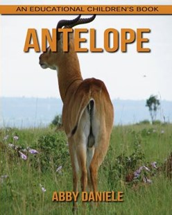 Antelope! an Educational Children's Book about Antelope with Fun Facts and Photos by Abby Daniele (9781542455596) - PaperBack - Non-Fiction Animals