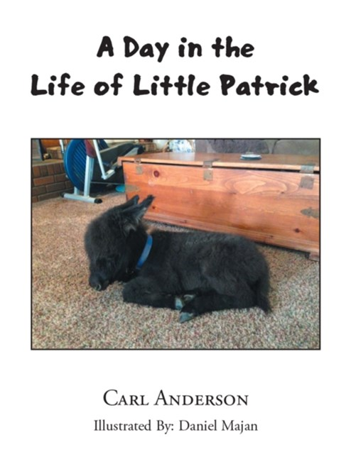 Day in the Life of Little Patrick