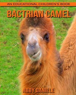 Bactrian Camel! an Educational Children's Book About Bactrian Camel With Fun Facts & Photos by Abby Daniele (9781546474586) - PaperBack - Non-Fiction Animals