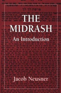 Midrashan Introduction by Jacob Neusner (9781568213576) - PaperBack - Religion & Spirituality Christianity