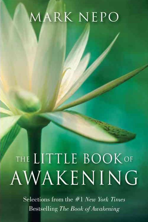 The Little Book of Awakening