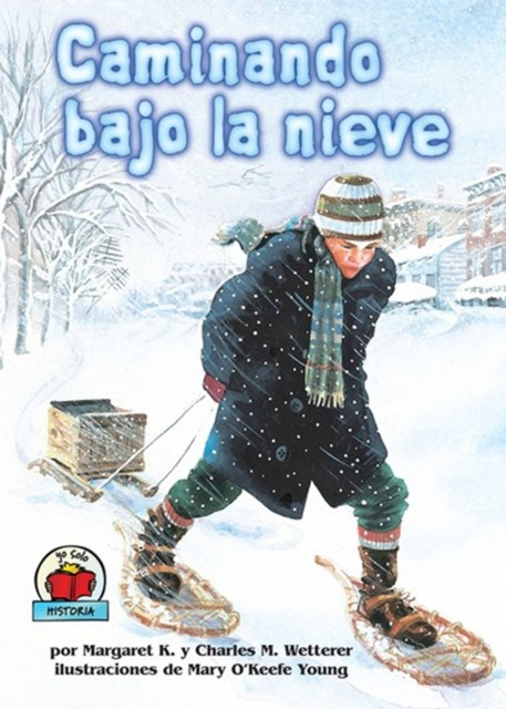 Caminando bajo la nieve (The Snow Walker)