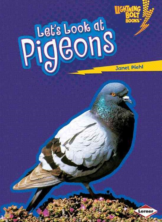 Let's Look at Pigeons