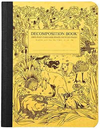 Decomposition - Notebook - Ruled - Large - Outback