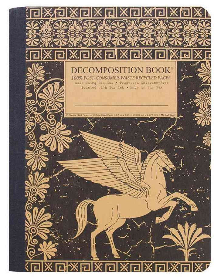 Decomposition - Notebook - Ruled - Large - Pegasus