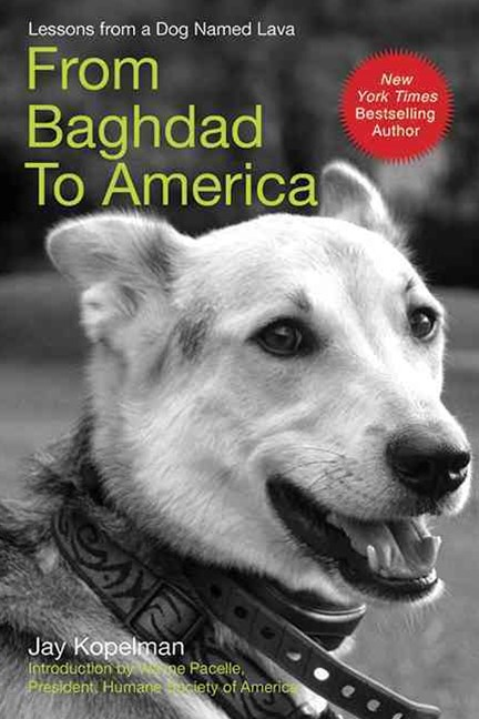 From Baghdad to America