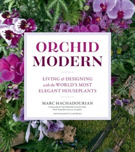 Orchid Modern: Living and Designing with the World's Most Elegant Houseplants by Marc Hachadourian (9781604698169) - PaperBack - Craft & Hobbies Floristry