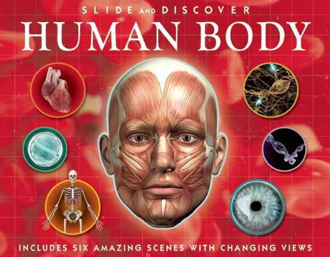 Slide and Discover: Human Body