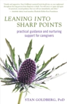 (ebook) Leaning into Sharp Points
