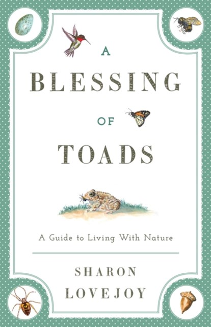 (ebook) Blessing of Toads