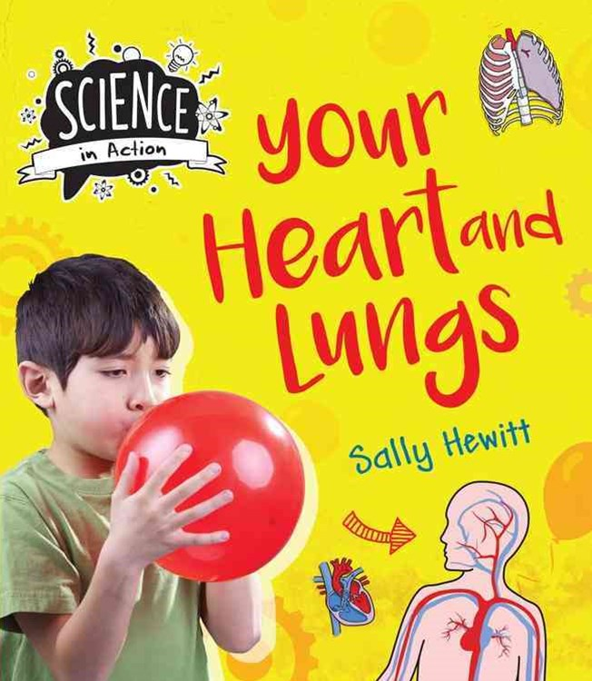 Your Heart and Lungs