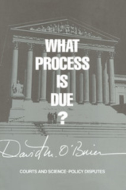 What Process is Due?