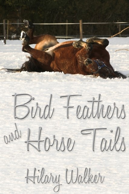 Bird Feathers and Horse Tails